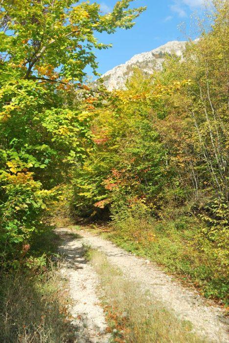 Un tratto del sentiero